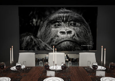dinner_with_gorilla